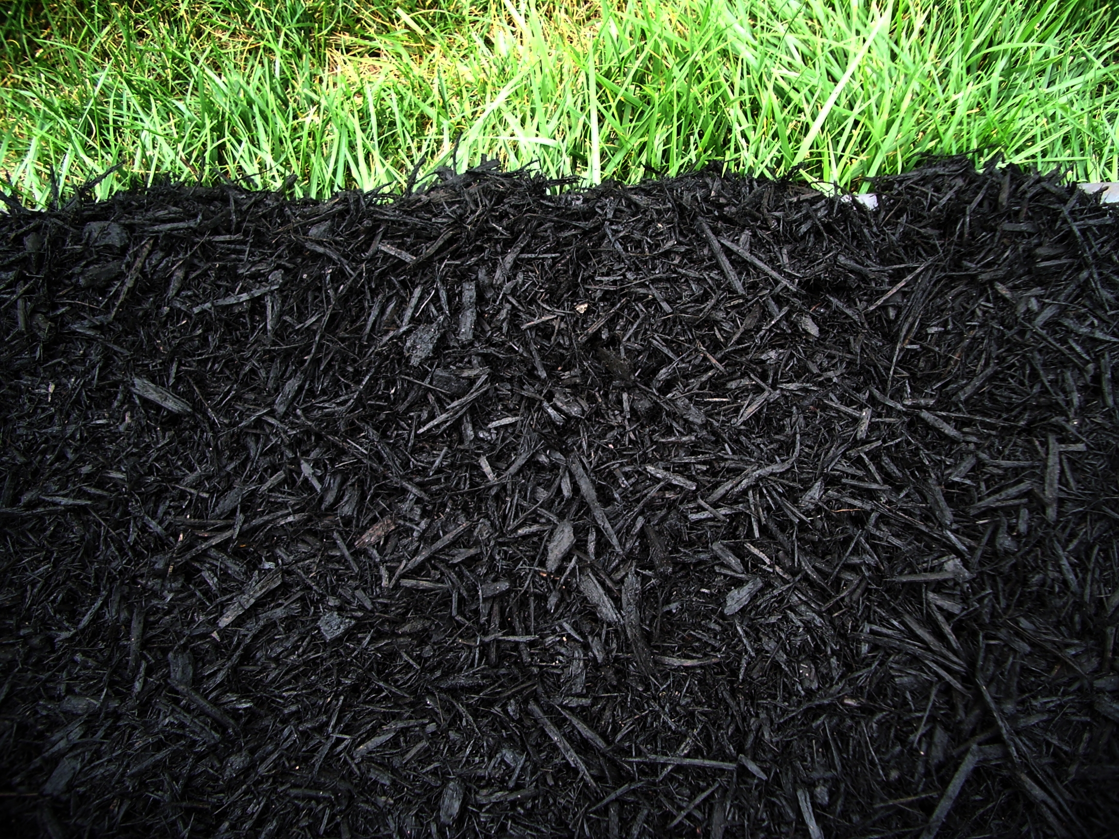 Pictures of mulch beds TFG (The Foschini Group) iFashion