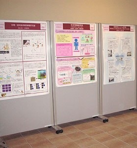 laminated visuals posters flipcharts other large business