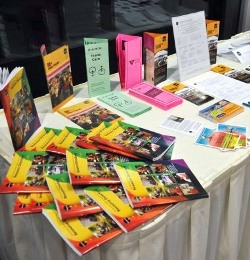 promotional literature printing flyers pamphlets brochures