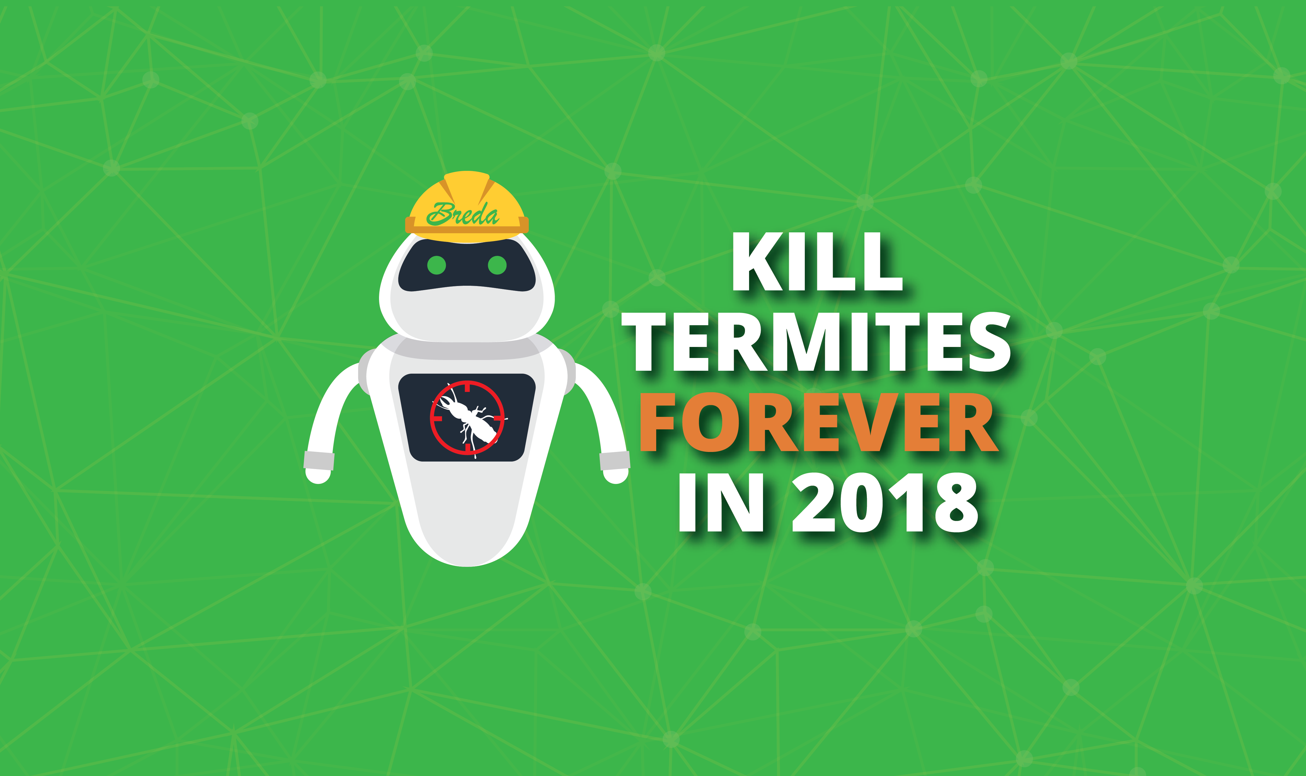 How to Kill Termites Forever in 2018 | Breda Pest Management
