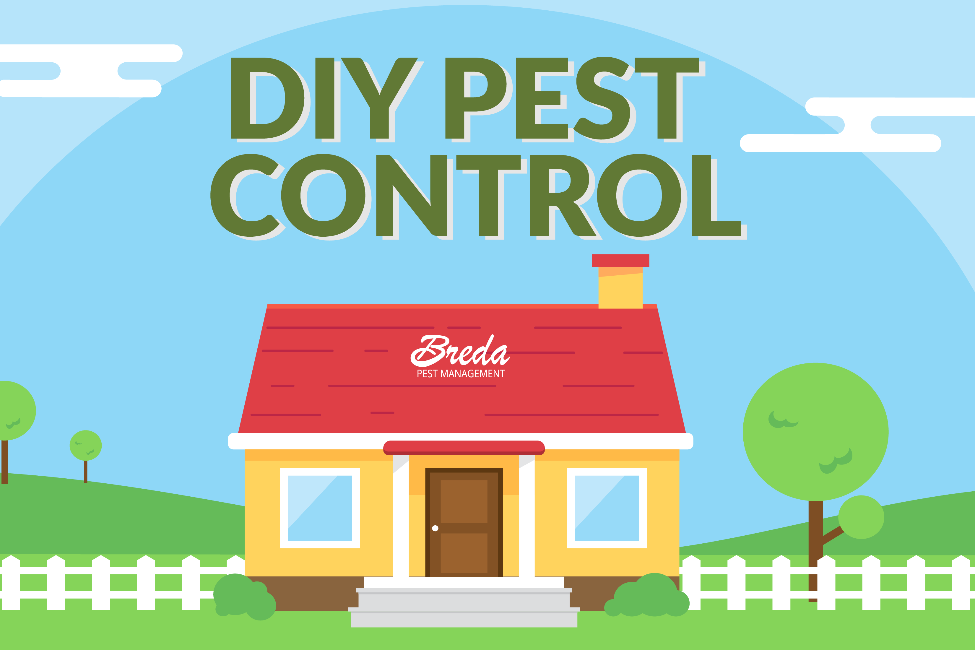 8 steps for do it yourself diy pest control breda pest management best tips for diy pest control solutioingenieria Image collections