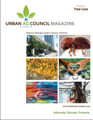 Selecting Your Tree Care Provider – Urban Ag Council Magazine