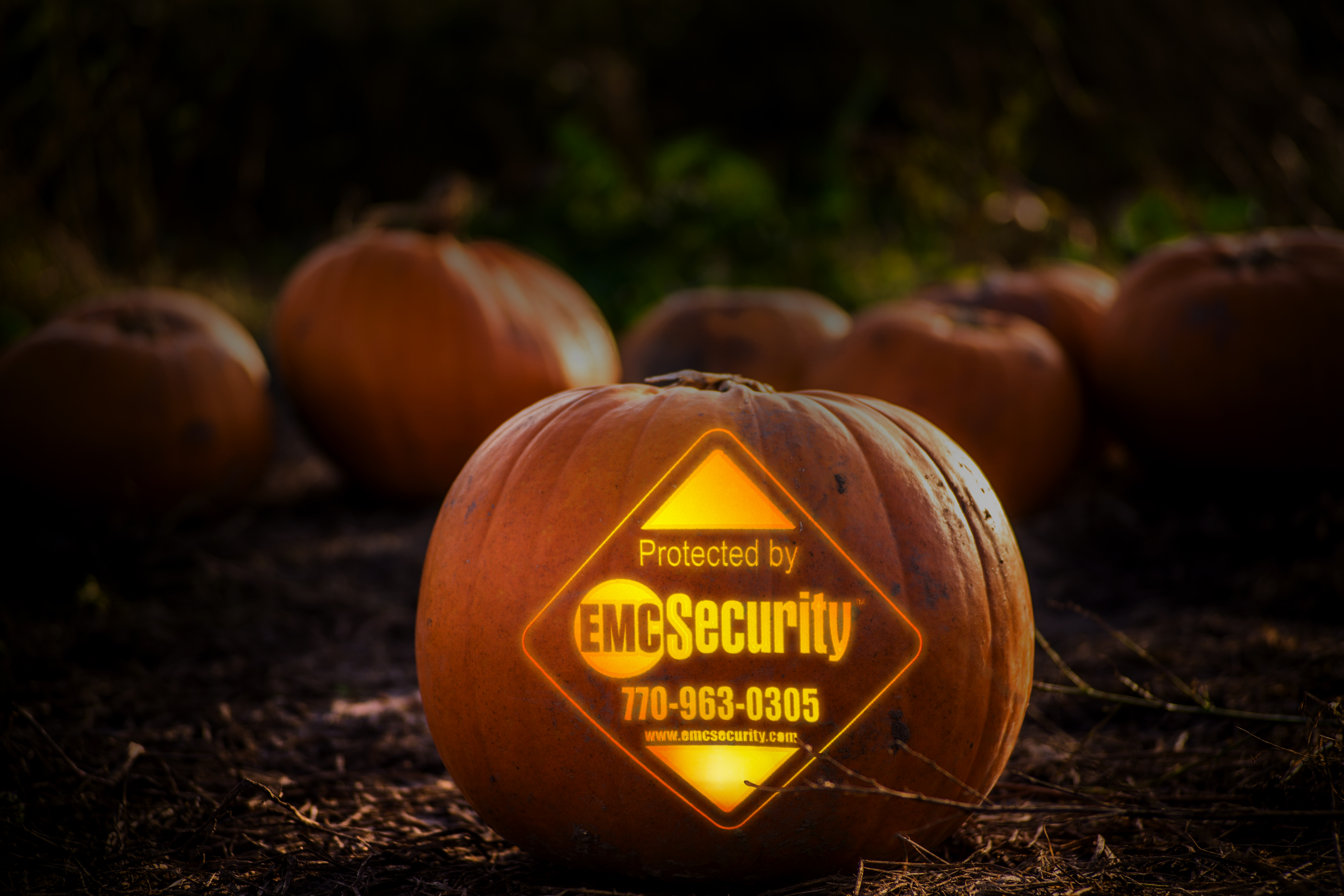 Does Crime REALLY Spike On Halloween? Surprising Facts About Danger to Your Home