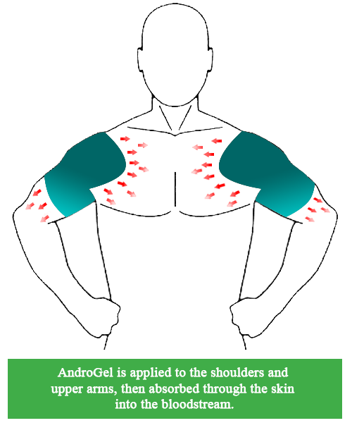 AndroGel Application