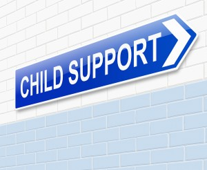 Net disposable income child support California