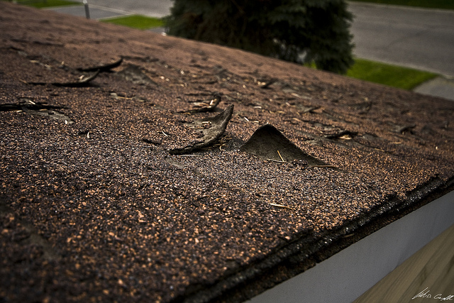 5 Signs Your Roof Shingles Are Rotting Findlay Roofing