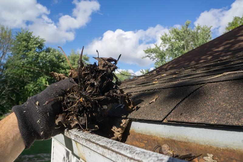 Debris in Gutter