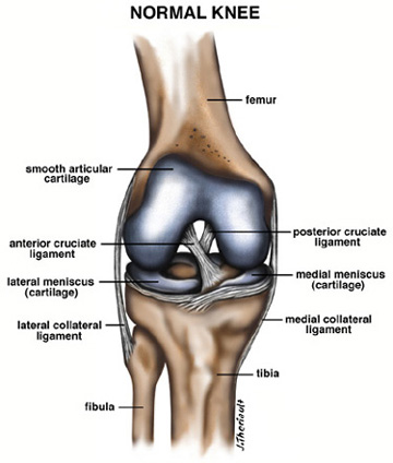 Arthroscopy Pinnacle Orthopaedics