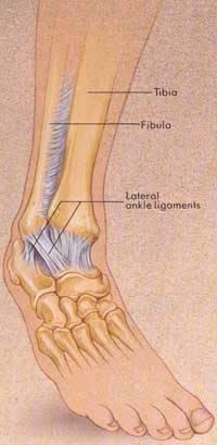 Treatment Of Foot Problems | Pinnacle Orthopaedics