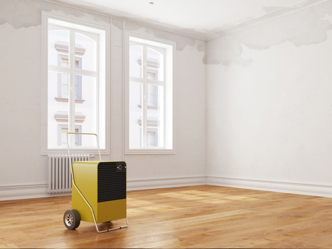 Dehumidifier in Empty Room
