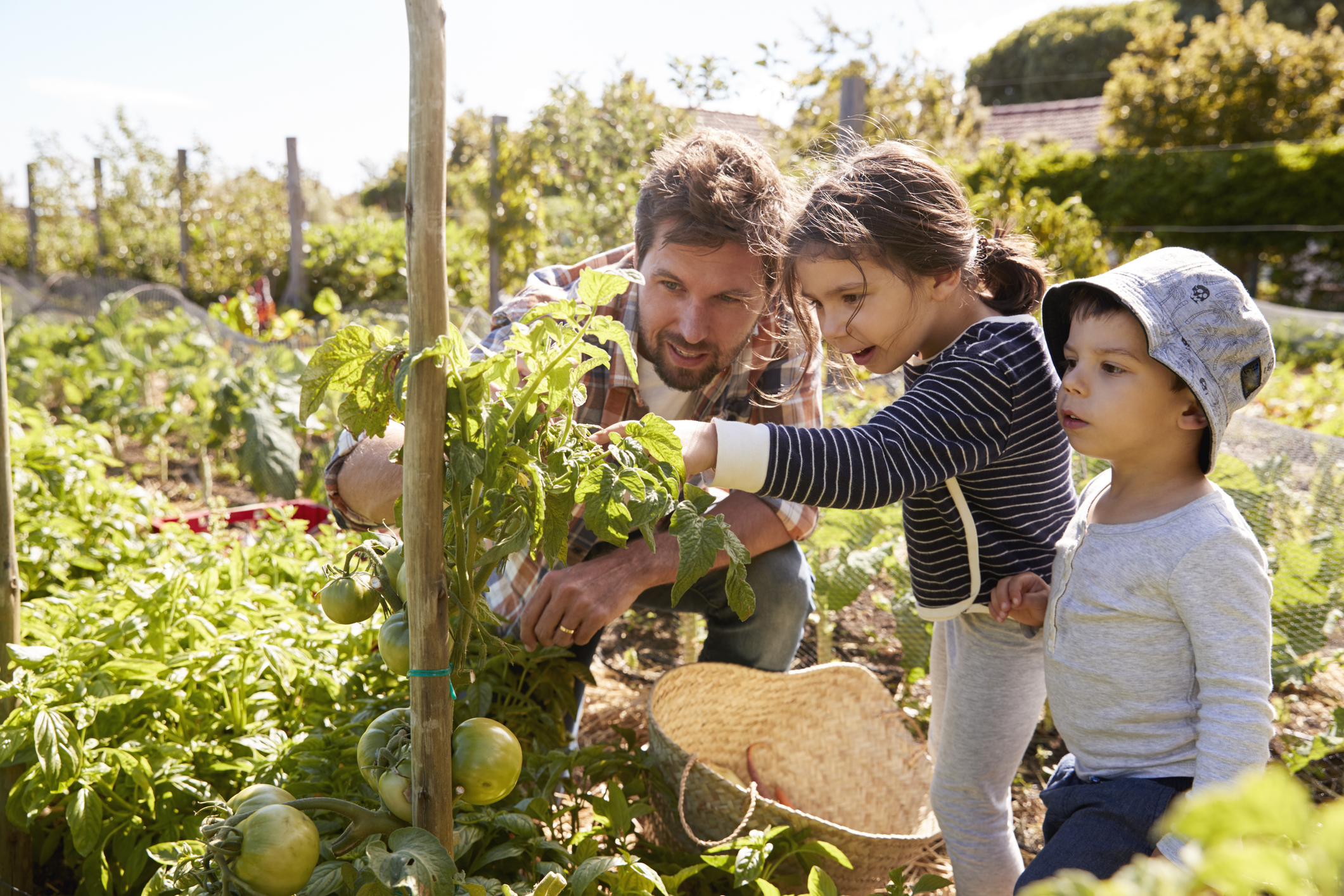 Fun Outdoor Activities for a Healthy Family