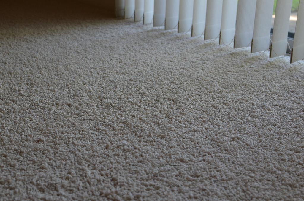 Zerorez 174 Professional Carpet Cleaners Undergo Extensive