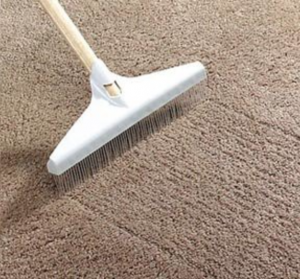 Rake Carpets in-between carpet cleaning