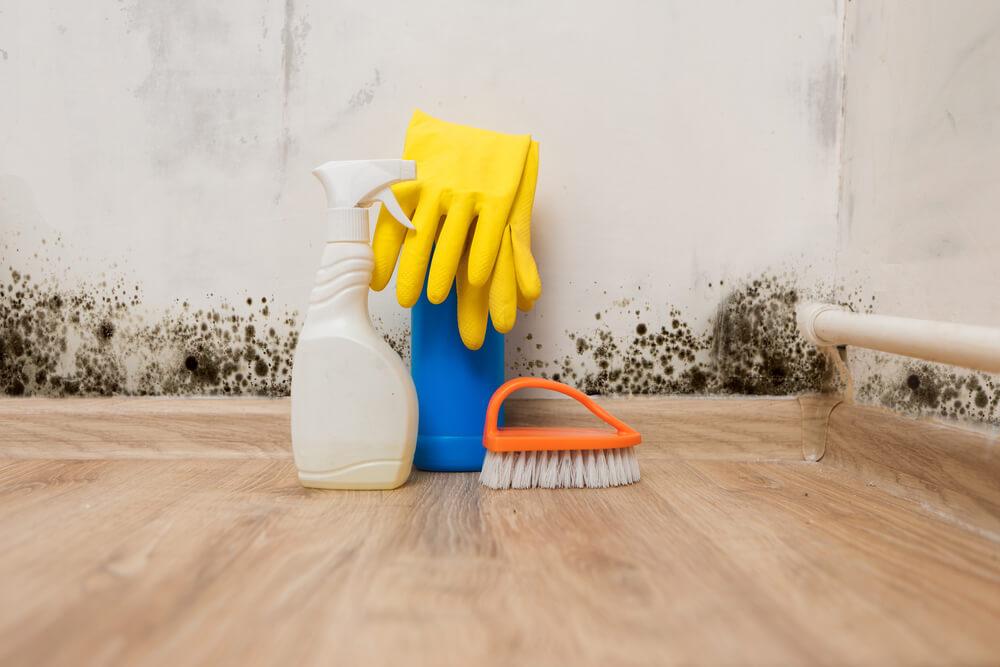 cleaning bathroom mold