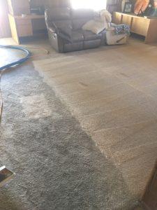 cheap carpet cleaning las vegas