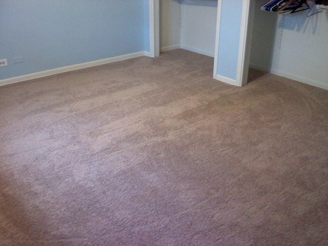 Diy vs professional carpet cleaning zerorez atlanta for Zerorez hardwood floors