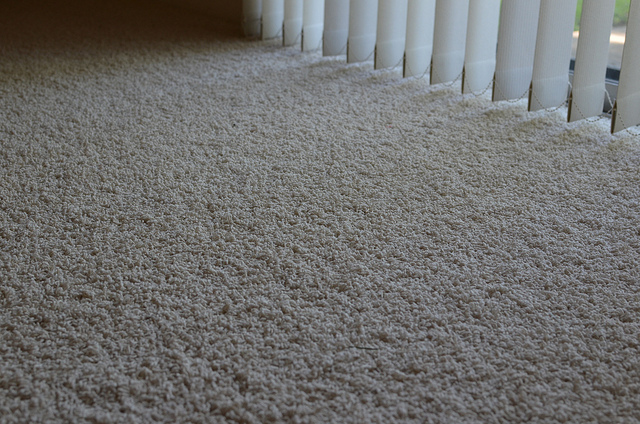 Why Summer Carpet Cleaning Makes Sense On Many Levels