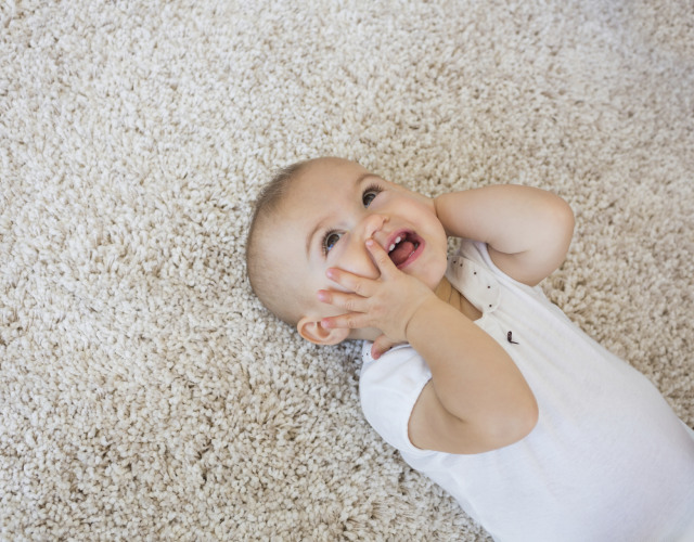 How Often Should You Get Your Carpets Cleaned Zerorez