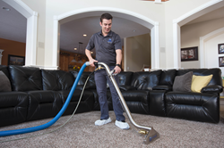How Do You Get Carpets Really Clean Zerorez Carpet Cleaning