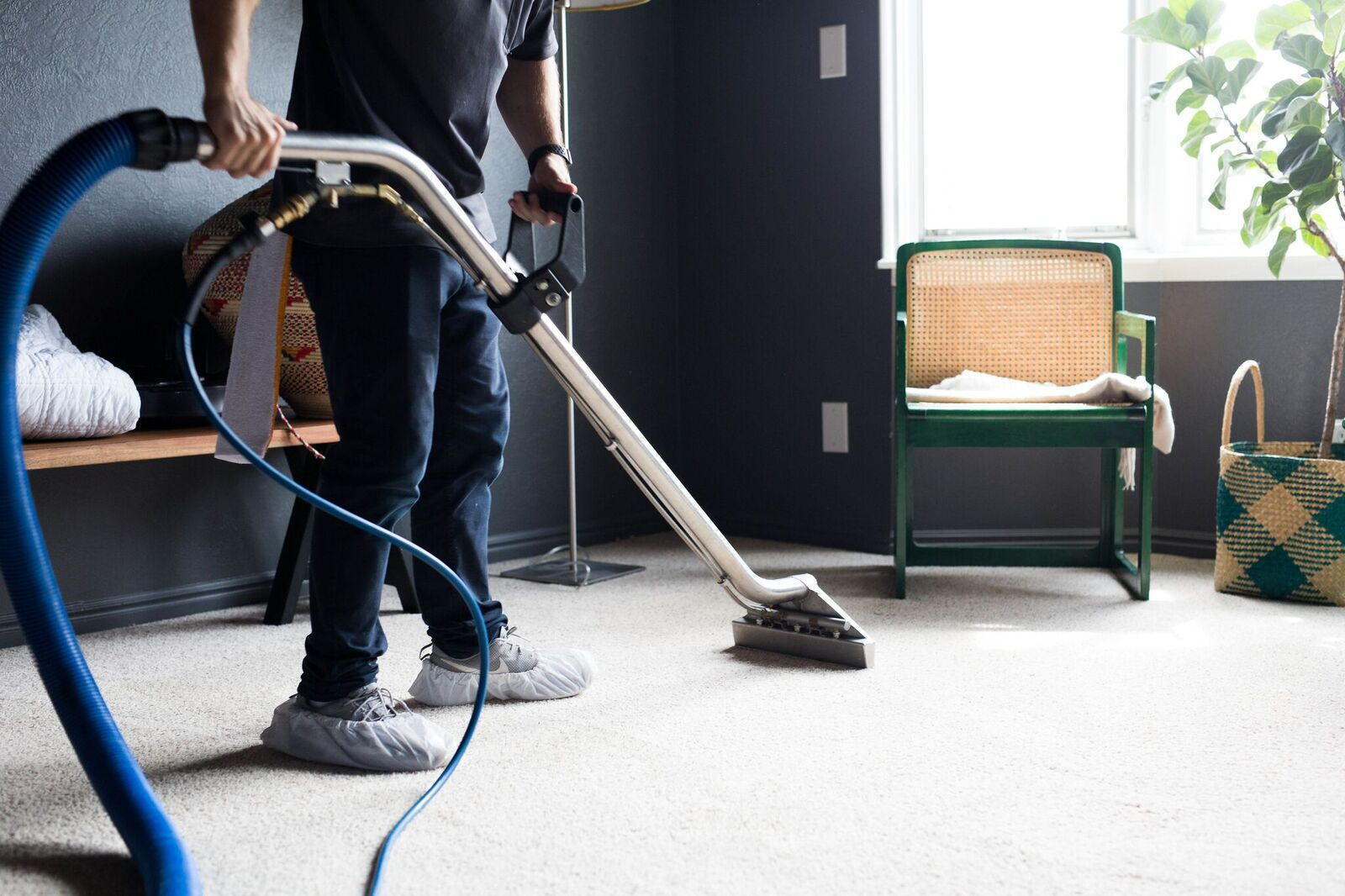 Carpet Cleaning San Diego Zerorez San Diego